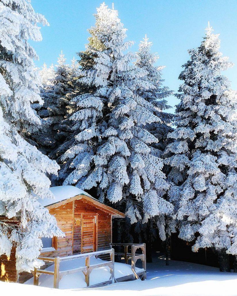turkiyedeki en iyi kayak merkezleri - uludag