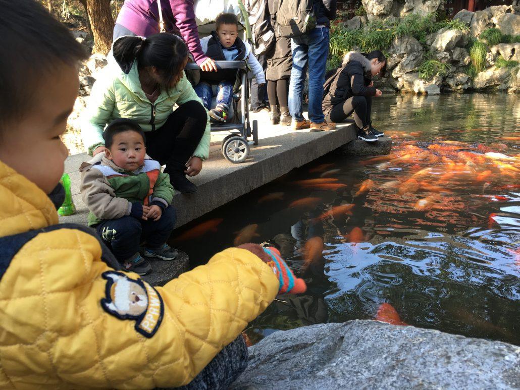 yuan yuan bahçesi şangay
