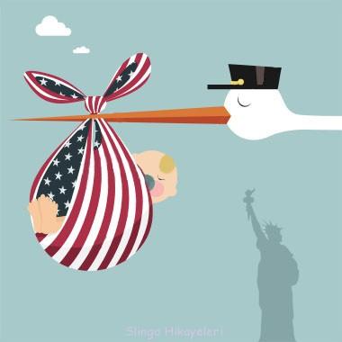 Amerikada dogum zorluklari