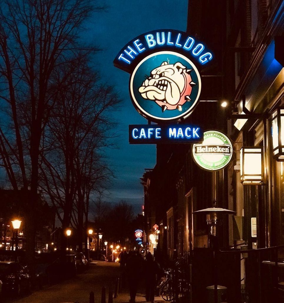 amsterdamda coffee shoplar - bulldog