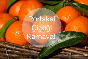portakal cicegi karnavali adana