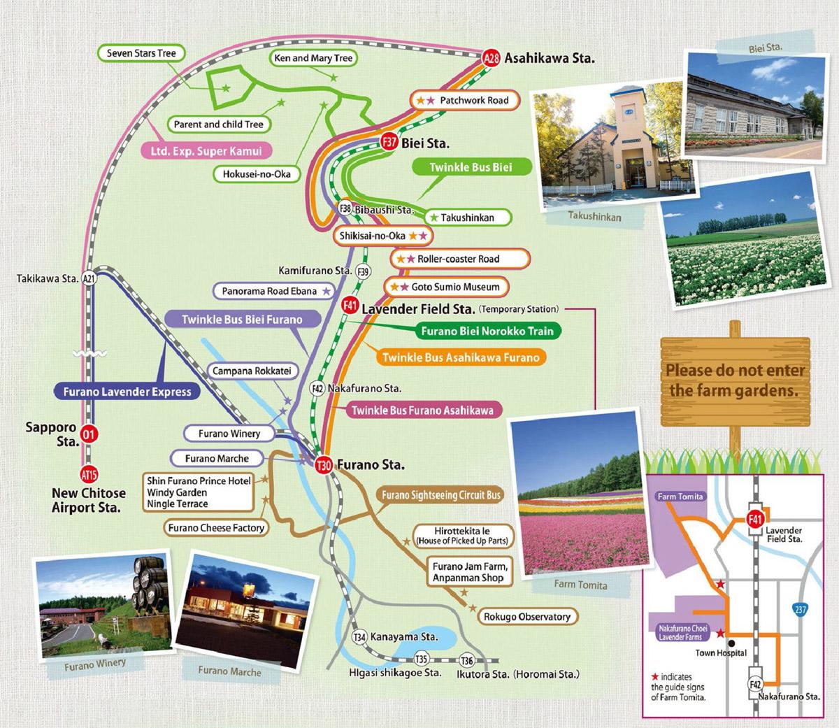 kuzey japonya gezi rehberi - tomita çiftliği -hokkaido