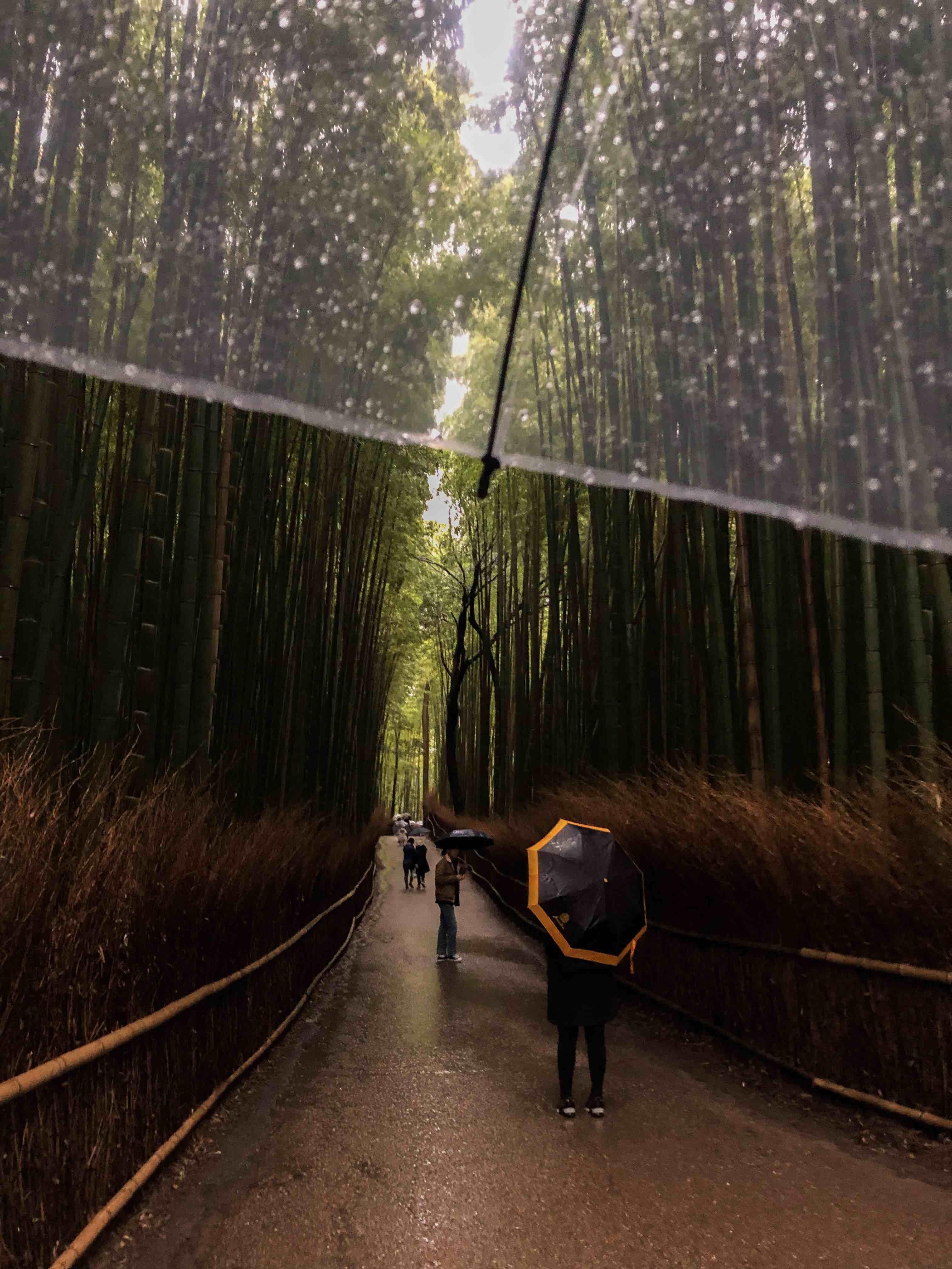 Arashiyama - japonya gezilecek yerler