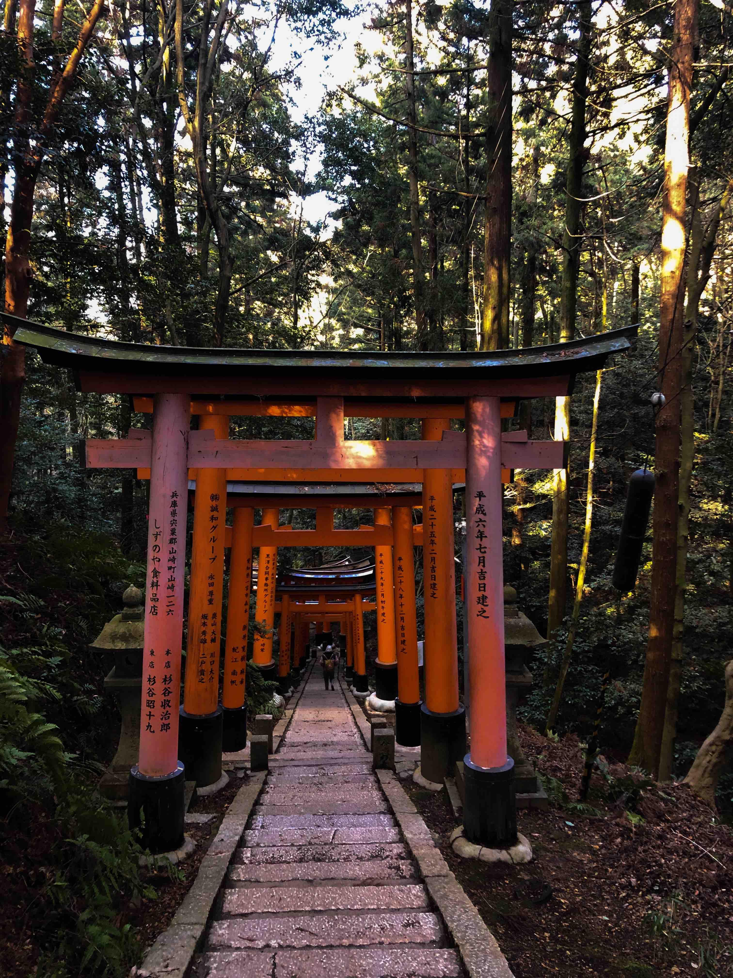 Fushimi Nari Shrine Tapınağı - Japonya Gezilecek Yerler