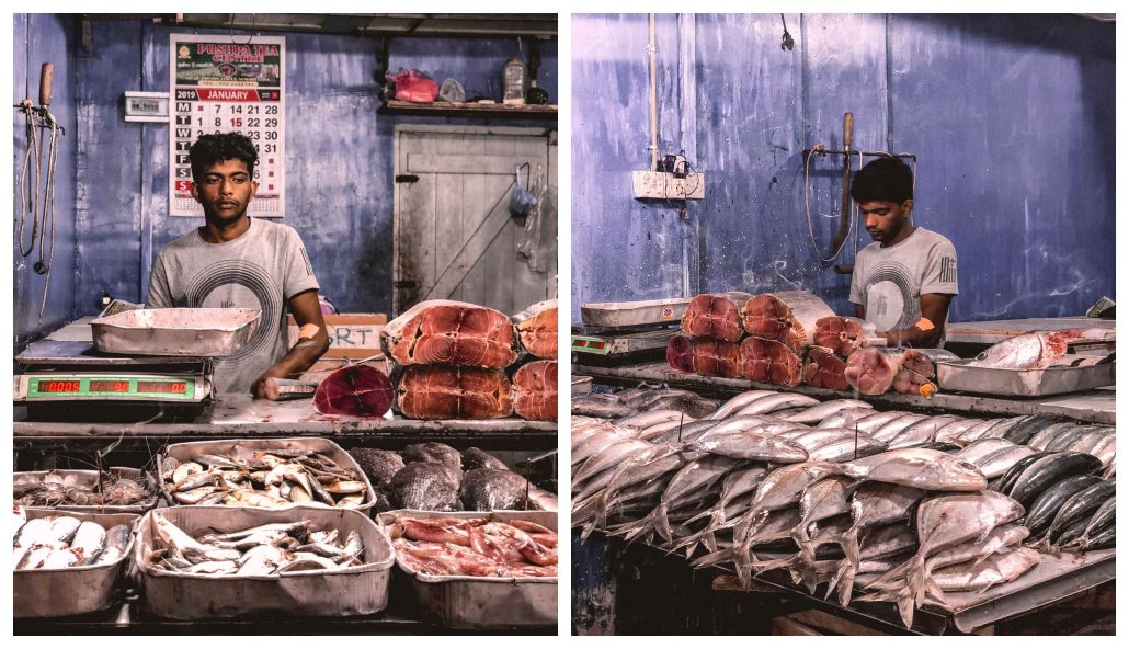 Sri Lanka Mutfağı - Balık Pazarı
