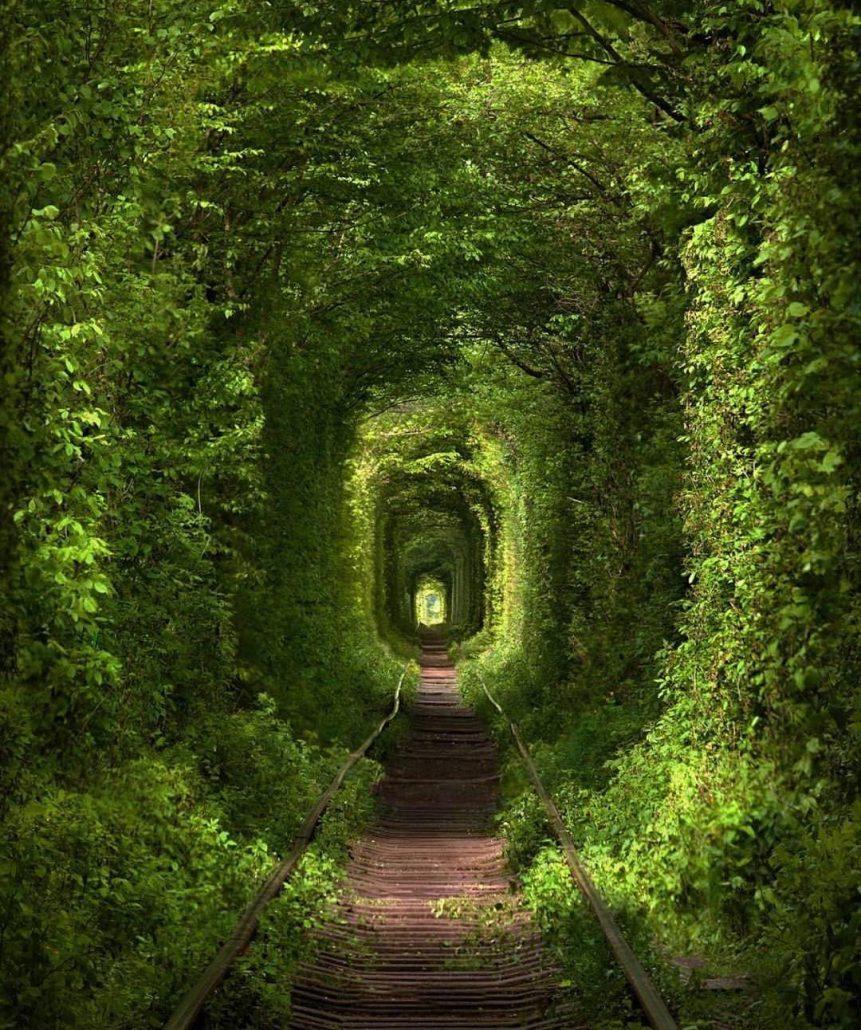 aşk tüneli - ukrayna gezi rehberi
