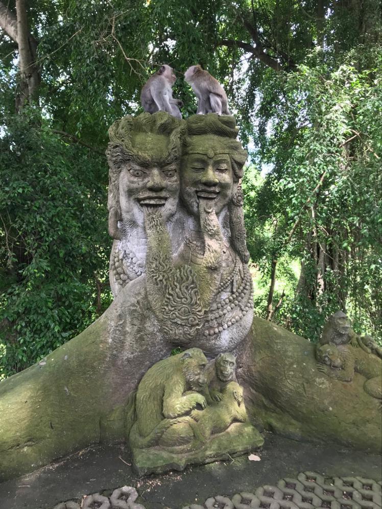 maymun ormanı - bali gezilecek yerler