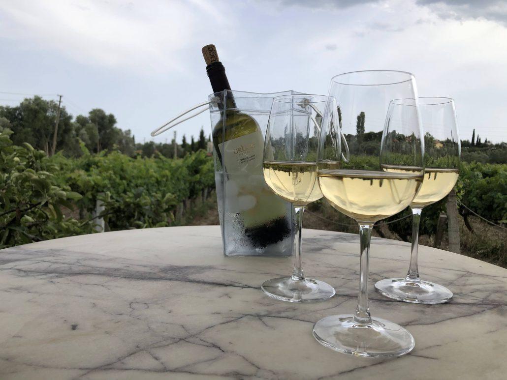 Türkiye En İyi Şarap Rotaları - Urlice